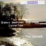 Picture of CD of clarinet trios by Brahms, Beethoven and Hugh Wood, performed by Trio Gemelli - John Bradbury (clarinet), Adrian Bradbury ('cello), Emily Segal (piano).