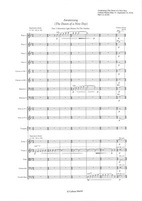 Picture of Sheet music  for flute, oboe, clarinet, bassoon, french horn, timpani, string quartet and double bass. Awakening (The Dawn of  a New Day) is an orchestra piece written by Colleen Muriel It is approximately 7 minutes in length and has 5 main parts (sections/movements)